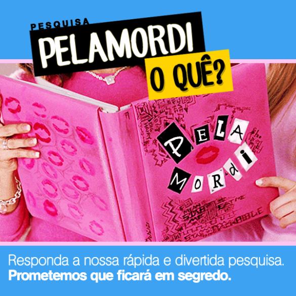 Pesquisa_pelamordi-o-que_burn-book