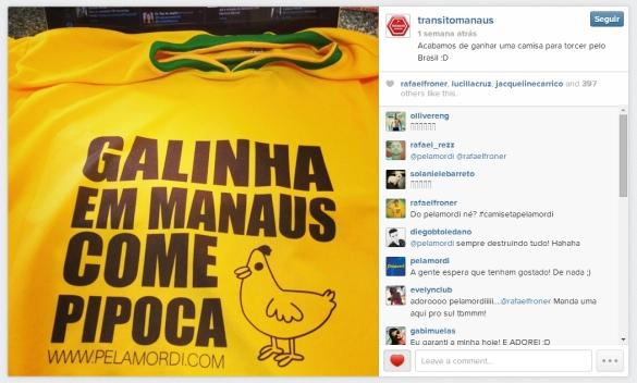 Galinha em Manaus come pipoca_transito manaus